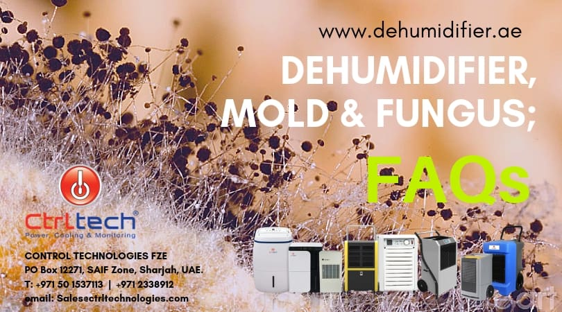 Dehumidifier to remove Mold and fungus FAQ